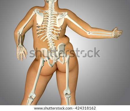 3d fat back body anatomy with skeleton - stock photo