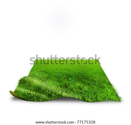 """3D"" grass concept image over white"