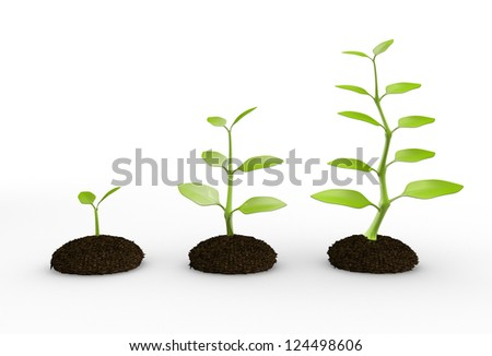3d green plant growing in soil. 3d render - stock photo