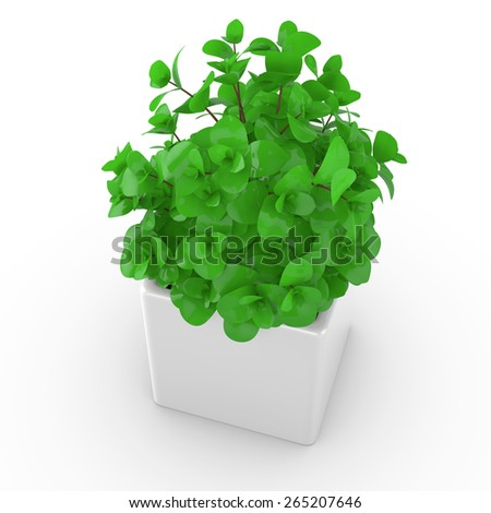 3d houseplant in a vase. Isolated object - stock photo