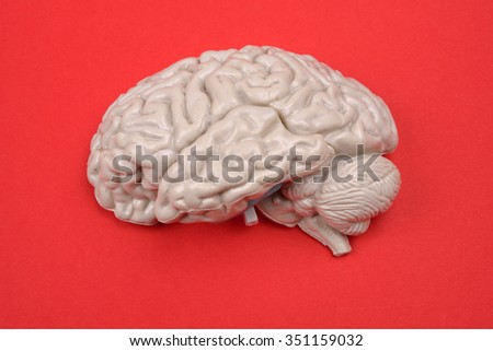 3D human brain model from external on red background - stock photo