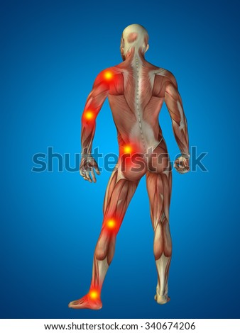 3D human or man with muscles for anatomy or health designs with articular or bones pain. A male on blue background for medical, fitness, medicine, bone, care, hurt, osteoporosis arthritis or body - stock photo