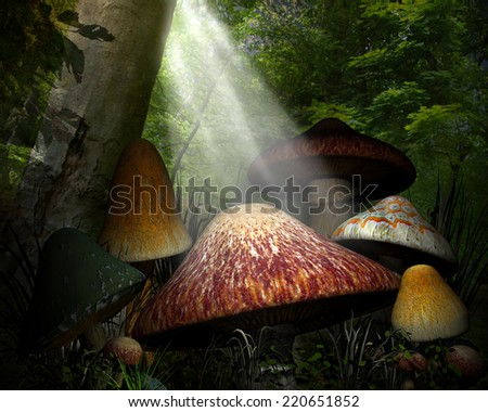 3D Illustrated Forest background with colorful mushrooms, tree's and light beaming through the forest.