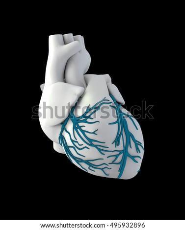 3d Illustration of Anatomy Human Heart - Isolated on black