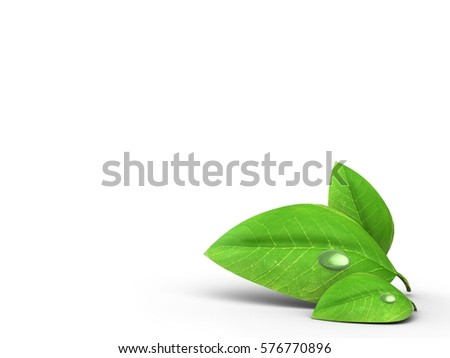 3d illustration of blank over white background with green leaf