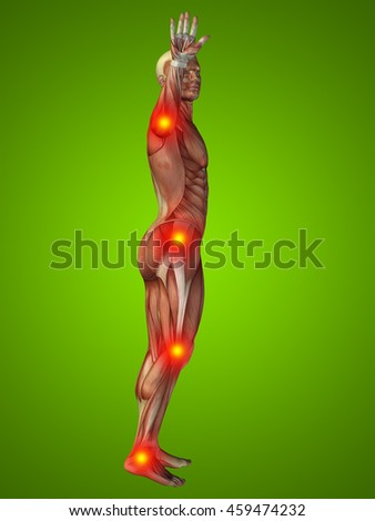 3D illustration of human or man with muscles for anatomy or health designs with articular or bones pain. A male  on green background - stock photo
