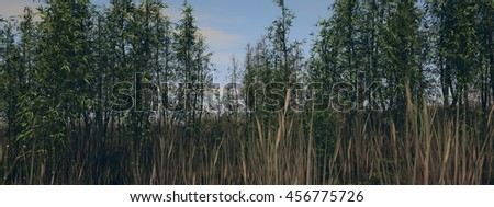 3d illustration of the bamboo grove - stock photo
