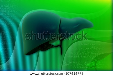 3d Liver and Gallbladder on a color background