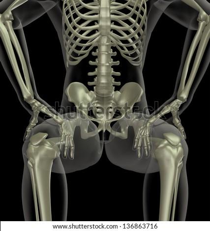 sitting skeleton stock images, royalty-free images & vectors, Skeleton