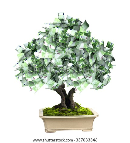 3d money tree with euro banknotes. Isolated on white background - stock photo