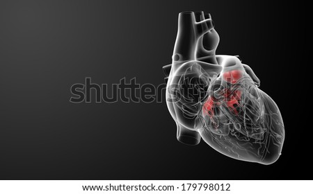 3d render Heart valve - side view - stock photo