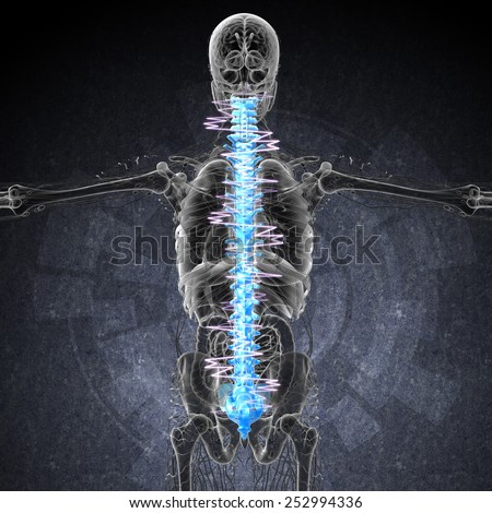 3d render medical illustration of the painful back - back view - stock photo