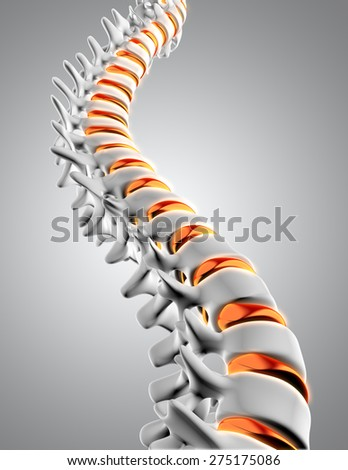 3D render of a close up of a spine with the discs highlighted - stock photo