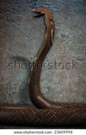 3d render of a cobra isolated on a stone texture background. Image has a clipping path. - stock photo