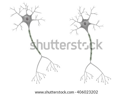 3d render of brain neuron