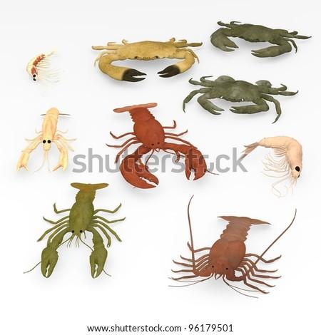 3d render of crustacean animals - stock photo