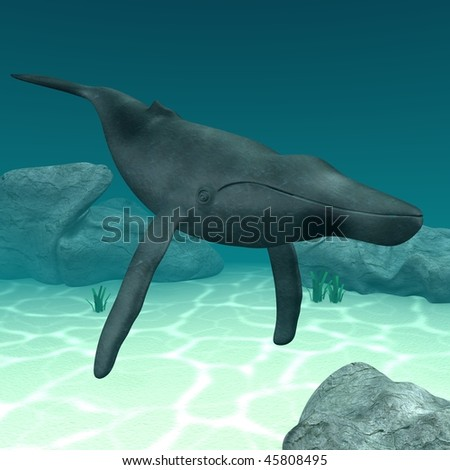 3d render of humpback whale - stock photo