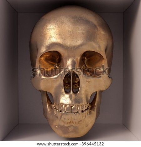 3d render of skull in box. Front view - stock photo