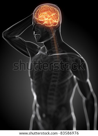 3d rendered anatomy illustration - painful head - stock photo