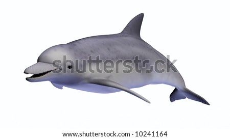 3D-rendered dolphin on a white background. - stock photo