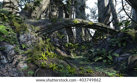 3D rendered illustration of sunset deep forest - stock photo