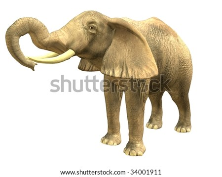 3D rendered isolated drinking elephant.