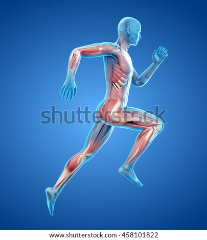 3d rendered medically accurate illustration of  - stock photo