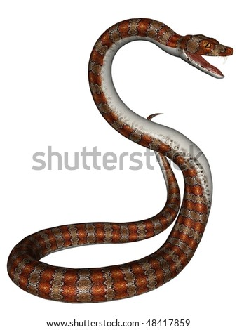 3D rendered snake on white background isolated - stock photo