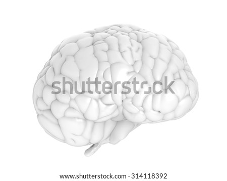 3d rendered white brain  - stock photo