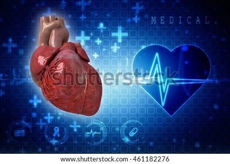 3d rendering Human Heart - Anatomy of Human Heart