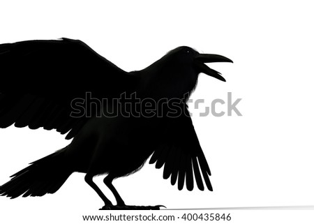 3D rendering of a black raven isolated on white background - stock photo