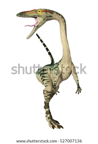 3D rendering of a dinosaur Coelophysis isolated on white background