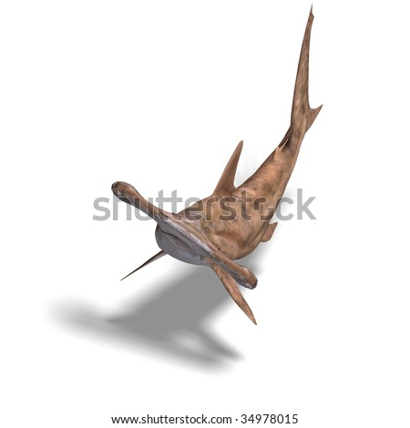 3D rendering of a hammerhead shark with clipping path and shadow over white - stock photo