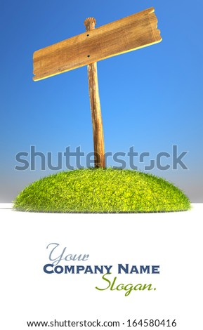 3D rendering of a wooden sign post on a grass promontory ideal for inserting your own message - stock photo