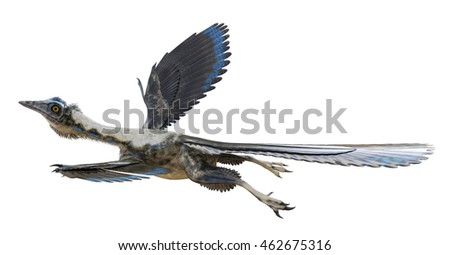 3D rendering of Archaeopteryx.