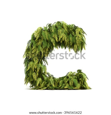 3D rendering of coconut palm leaves alphabet