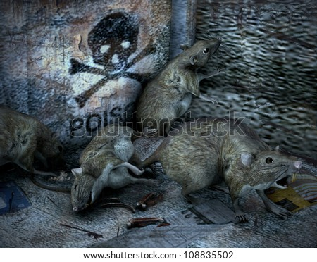 3d rendering of rats as illustration - stock photo