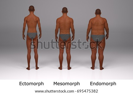 In Shape Mesomorph Men