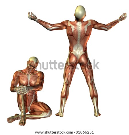 3D RenderingMuscle man sitting and standing - stock photo