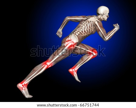 3D Skeleton Running with leg and hip joints highlighted - stock photo
