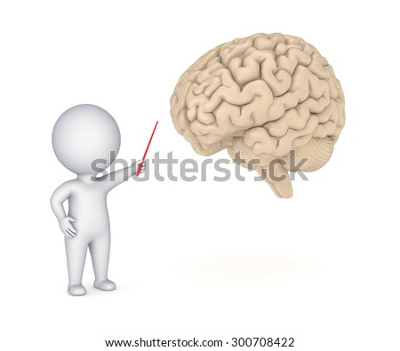 3d small person showing to human brain. - stock photo