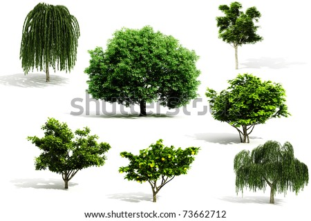 3d tree pack - render on white background - stock photo