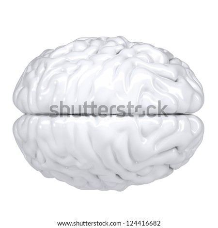 3d white human brain. View from above. Isolated render on a white background - stock photo