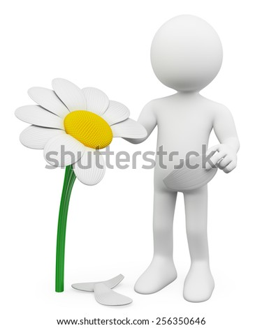 3d white people. Man tears off petals of daisy. Concept of choosing. Isolated white background. - stock photo