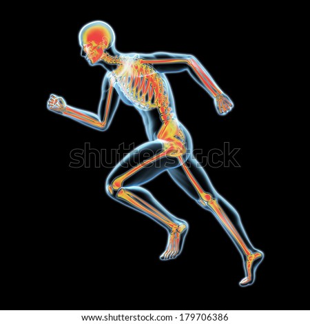 3d x-ray running human with skeleton inside, isolated on black background - stock photo
