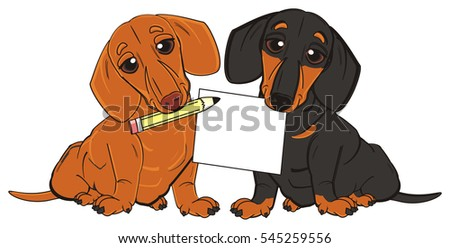 dachshunds sit and hold on his mouth a clean paper and a pencil