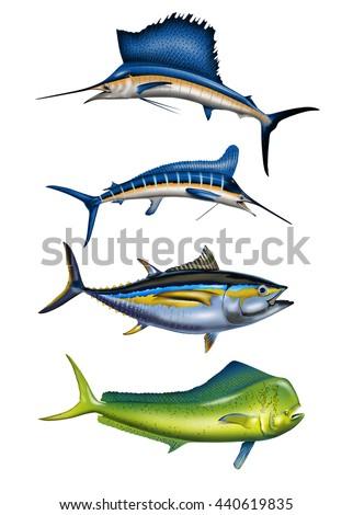 4 deep sea sport fish swordfish stock illustration for Dolphin deep sea fishing