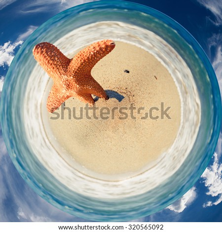 360 degree image of a orange starfish on the sandy beach with sea waves and sky around - stock photo