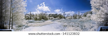 180 degree infrared panorama of lake and forest scene - stock photo