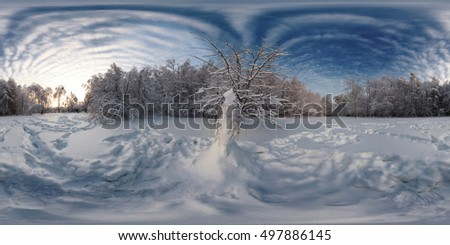 360 Degree Spherical Panorama From Siberia Russian Winter The Picture With Snow Snowman